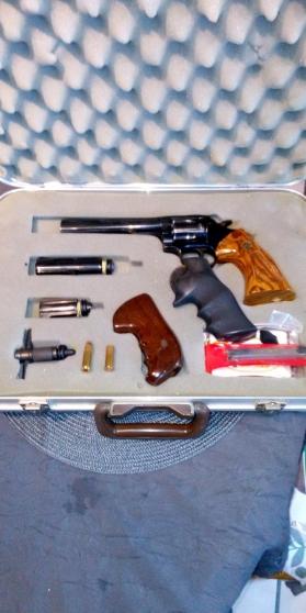 Révolver Dan Wesson 357 Magnum