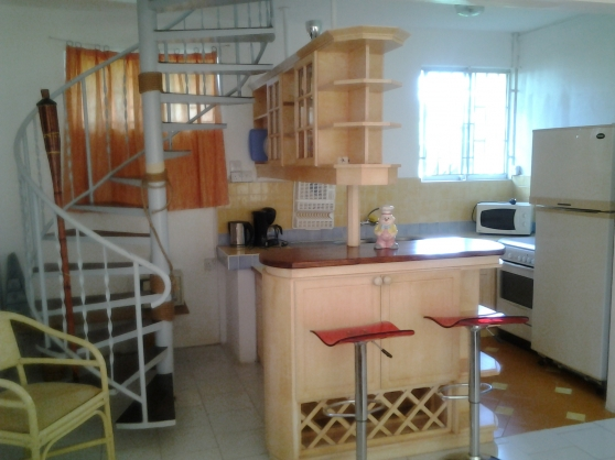 Annonce occasion, vente ou achat 'locations ILE MAURICE'