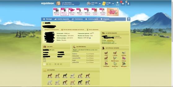 Annonce occasion, vente ou achat 'Vente compte Equideow'