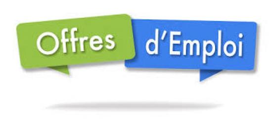 Annonce occasion, vente ou achat 'Mise Sous Pli A Domicile'