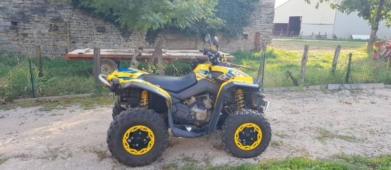 Annonce occasion, vente ou achat '500 can-am Renegade'
