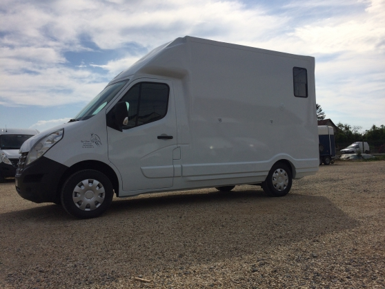Annonce occasion, vente ou achat 'Camion transport chevaux Renault Master'