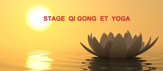 Stage de Qi gong et de Yoga à Metz