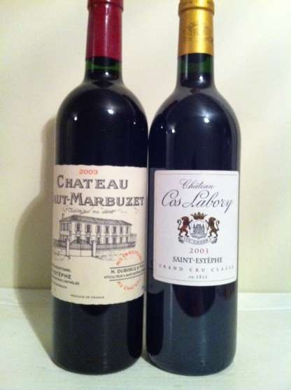 Lot de 2 : Haut-marbuzet 2003, cos 2003