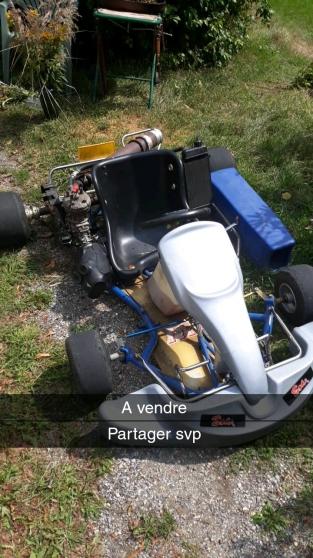 karting 100cc iame - Annonce gratuite marche.fr