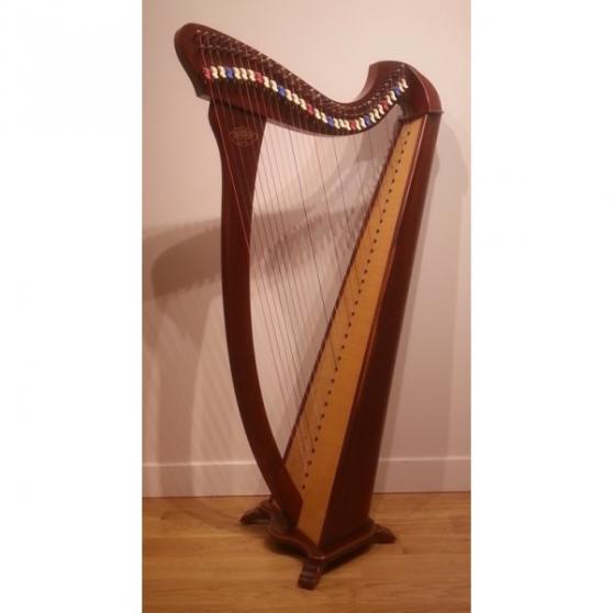 Annonce occasion, vente ou achat 'Harpe celtique korrigan 34 cordes'