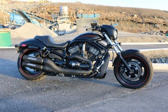 Harley-Davidson VRSCDX Night Rod specica