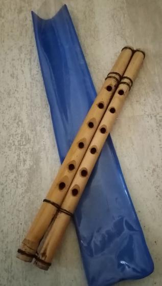 Annonce occasion, vente ou achat 'flûte double'