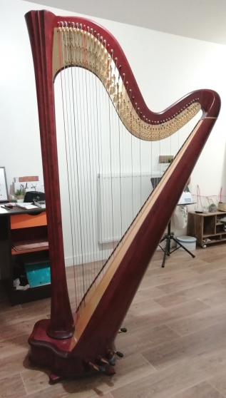 harpe salvi daphne 47ex, table large - Annonce gratuite marche.fr