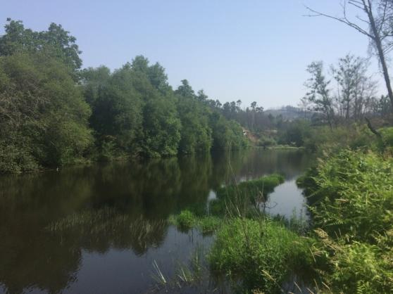 Villa au bord de la rivière au Portugal - Photo 4
