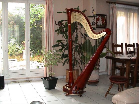 Harpe de concert 47 cordes double