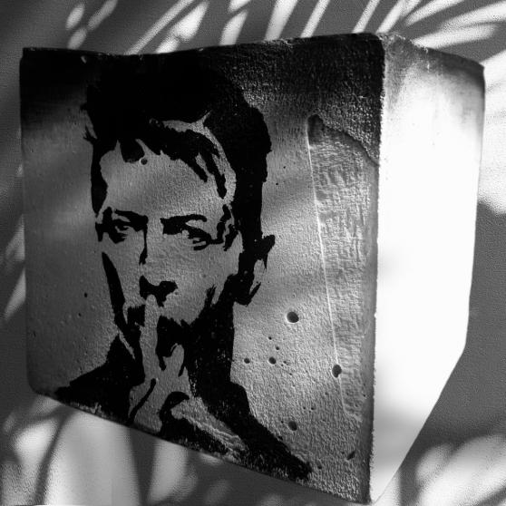 Pot de fleur porte crayon Bowie