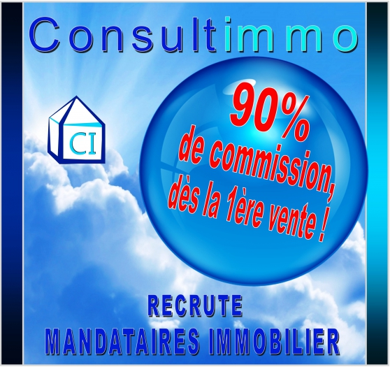 84 Mandataires immobilier Consultimmo