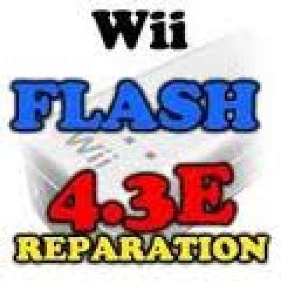 flash wii