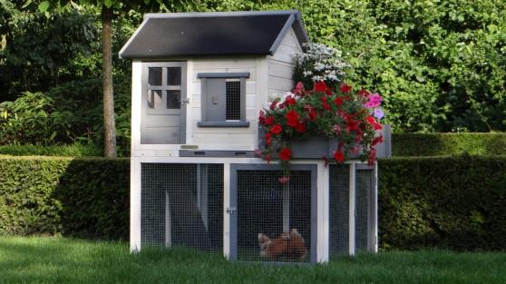 Poulailler avec jardinière