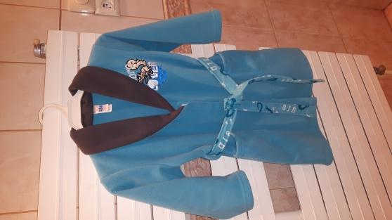 Annonce occasion, vente ou achat 'Robe de chambre âge de glace 4'