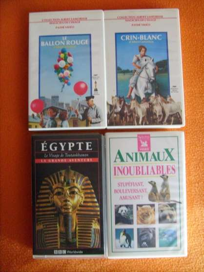 Films, documentaires, à voir en famille