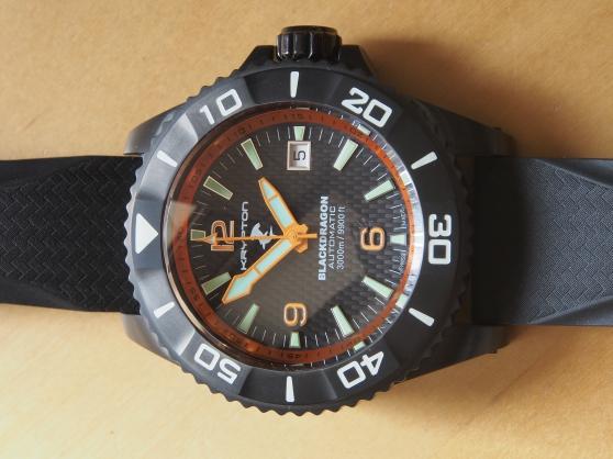 montre de plongée pro 3000 m. - Annonce gratuite marche.fr