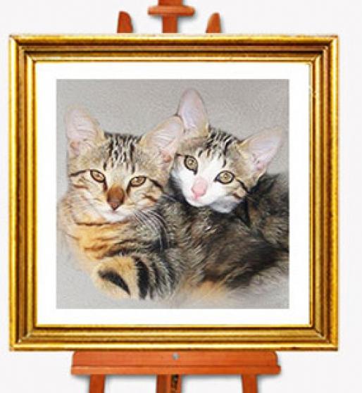 Portrait de vos animaux d'après photo