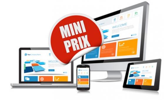 Annonce occasion, vente ou achat 'informatique : cours,depannage, site web'
