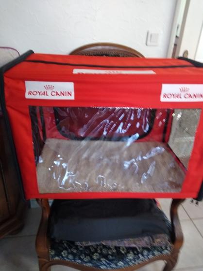 Cage d'expo ou niche chat /petit chien