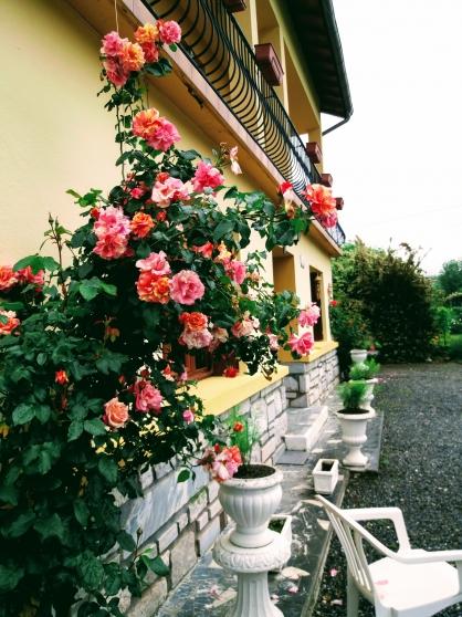 Annonce occasion, vente ou achat 'Confortable villa avec vue de montagne'