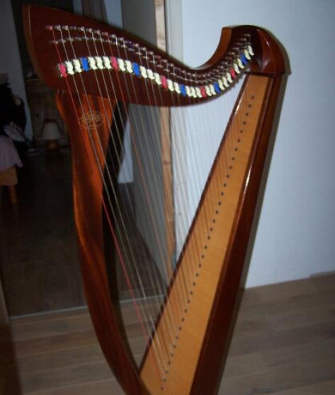 Annonce occasion, vente ou achat 'Harpe celtique korrigan camac 34 cordes'