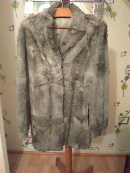 Annonce occasion, vente ou achat 'veste fourrure de renard argenté'