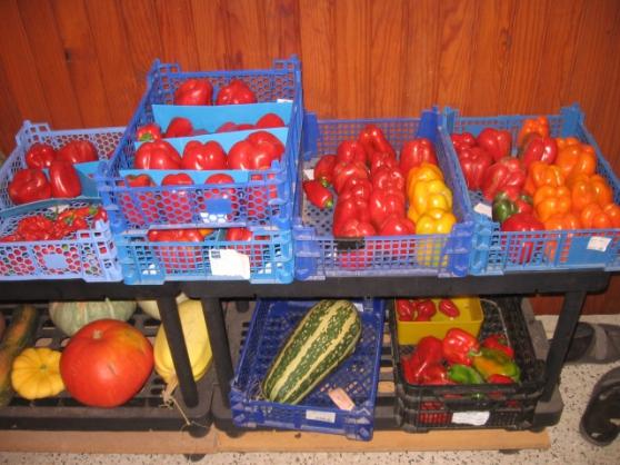 graines tomates anciennes ,autre graines - Photo 2