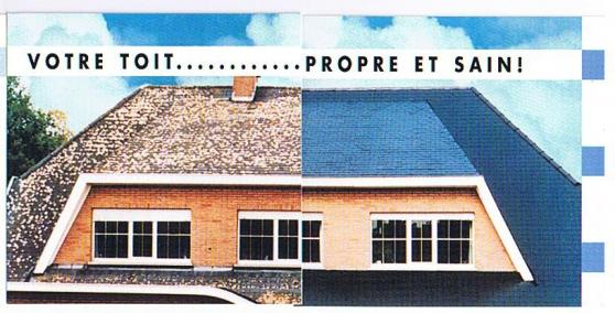 démoussage pose résine coloré sur toitu