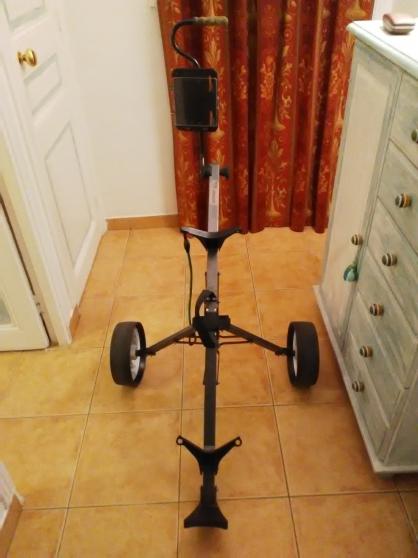 Annonce occasion, vente ou achat 'Chariot de golf'