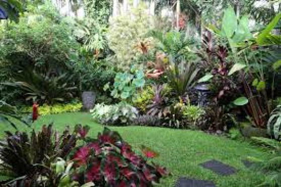Annonce occasion, vente ou achat 'entretien de la maison et du jardin'