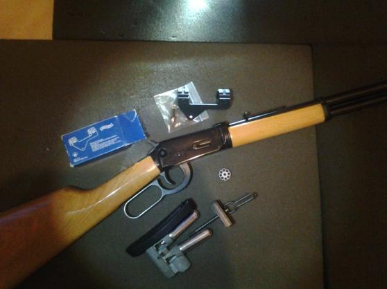 carabine co2 à plombs