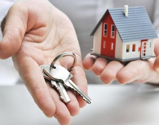 Annonce occasion, vente ou achat 'Colleteur de loyer'