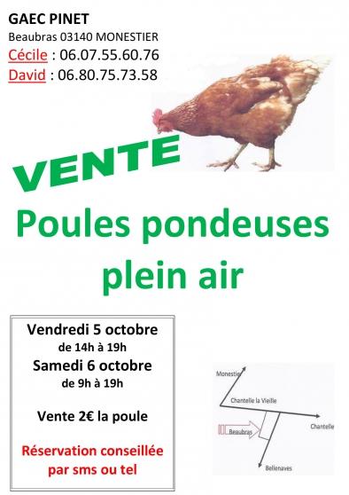Annonce occasion, vente ou achat 'poules pondeuses plein air'