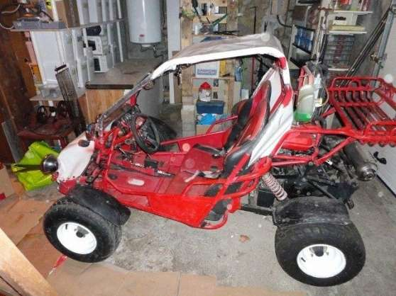 buggy kinroad