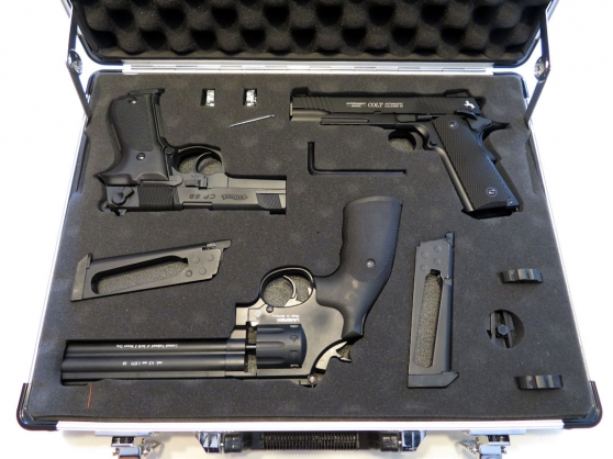 mallette avec 3 répliques co2 cal.4,5 mm - Annonce gratuite marche.fr