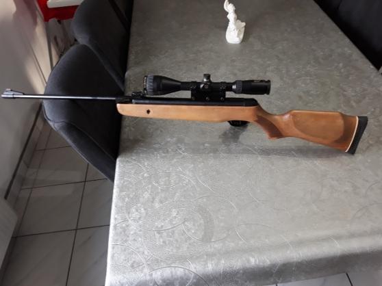 gamo hunter 440-4,5mm + lunette de tir n - Annonce gratuite marche.fr