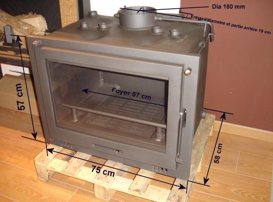 insert foyer bouilleur chaudiere a bois
