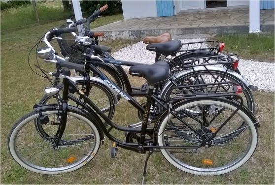 location vélos eco sur oléron - Annonce gratuite marche.fr