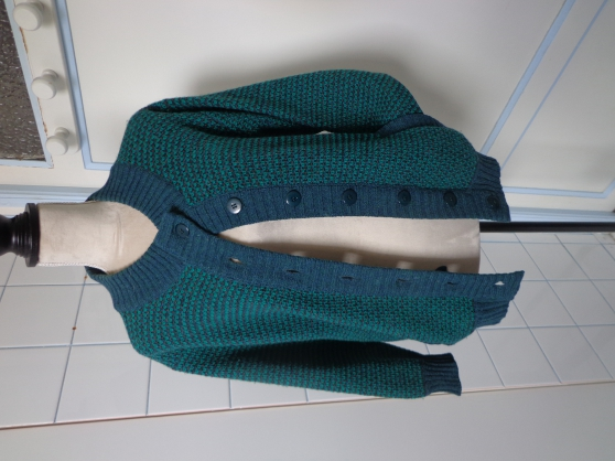 Annonce occasion, vente ou achat 'GILET en pure laine d\'Ecosse 40€'