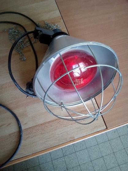 lampe chauffante - Annonce gratuite marche.fr