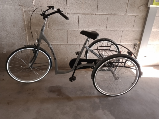 Annonce occasion, vente ou achat '400 EUROS TRICYCLE ADULTE VERMEIREN'