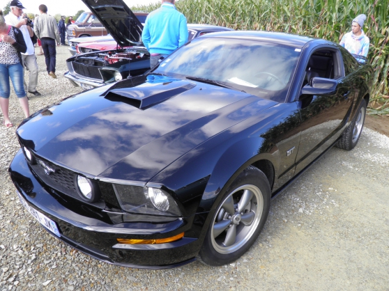 FORD MUSTANG GT 4.6 L