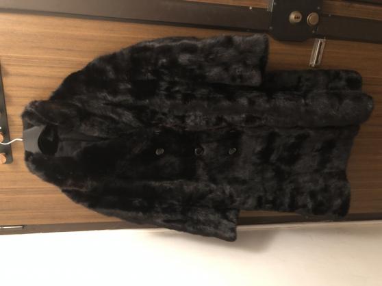 Vend manteau de Vison