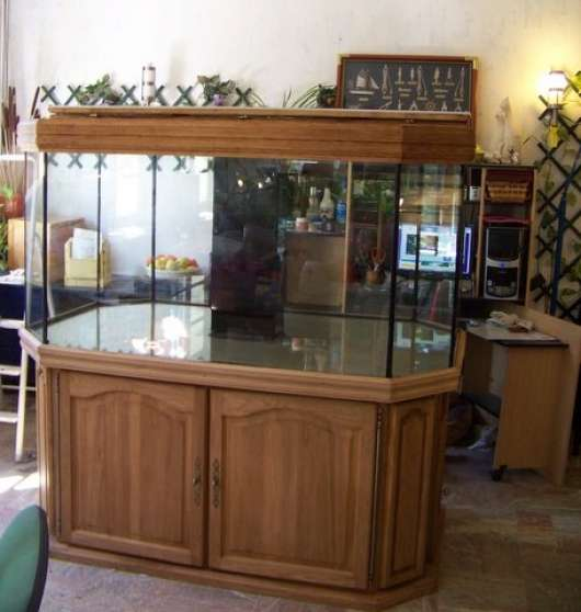 aquarium 1000 litres avec meuble reims animaux aquarium vivarium reims reference ani aqu. Black Bedroom Furniture Sets. Home Design Ideas