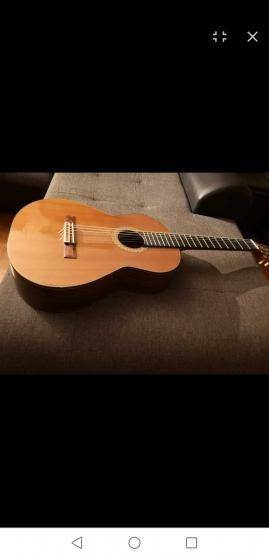 Guitare admira artista