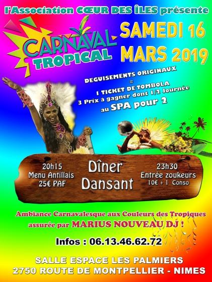 Annonce occasion, vente ou achat 'Dîner dansant carnaval tropical'