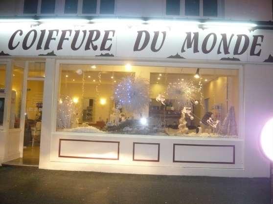 coiffure de style  -  balayages - - Annonce gratuite marche.fr