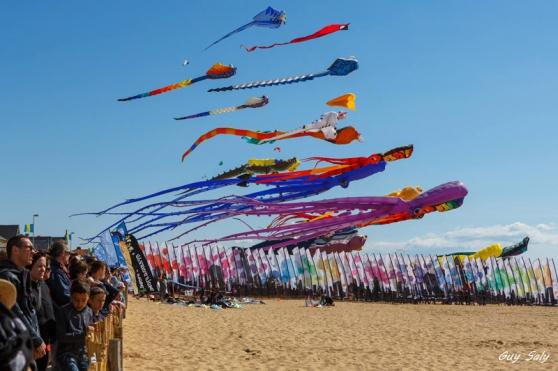 Annonce occasion, vente ou achat 'Festival du cerf-volant de Châtelaillon'